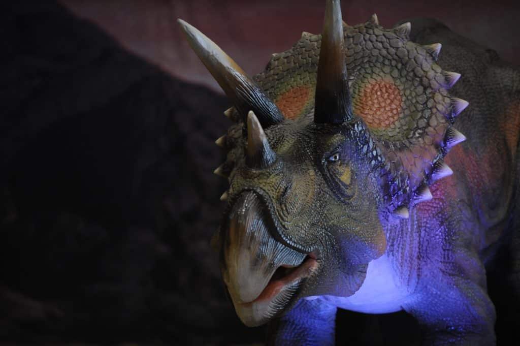 jjgeneva_pics_dinosaures3
