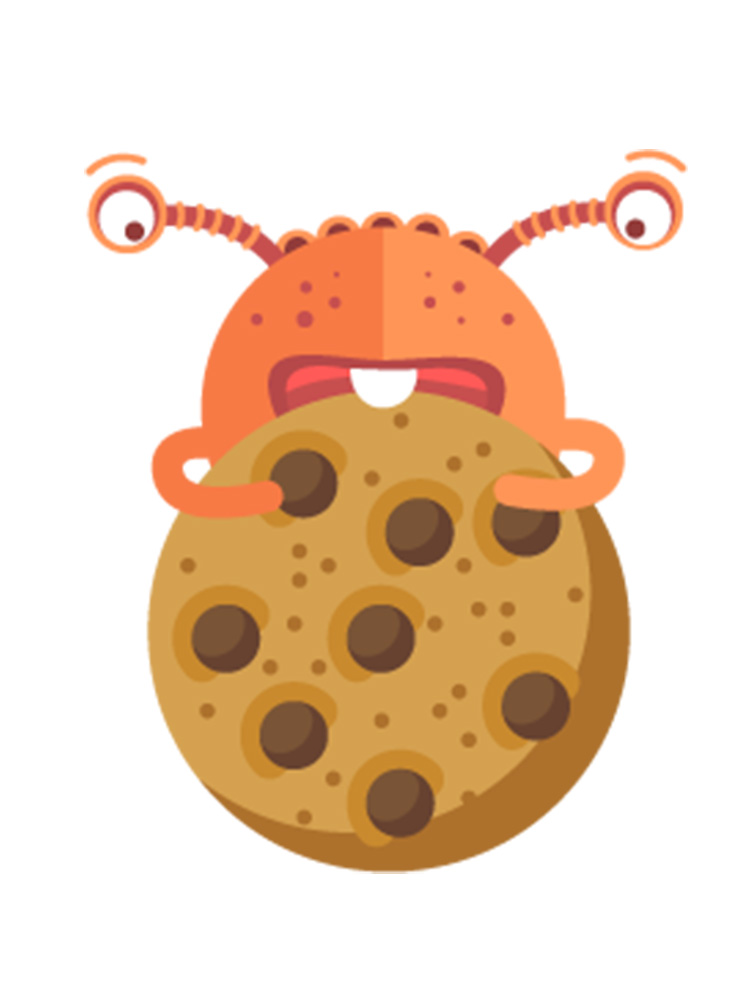 Que sont les cookies comprendre internet